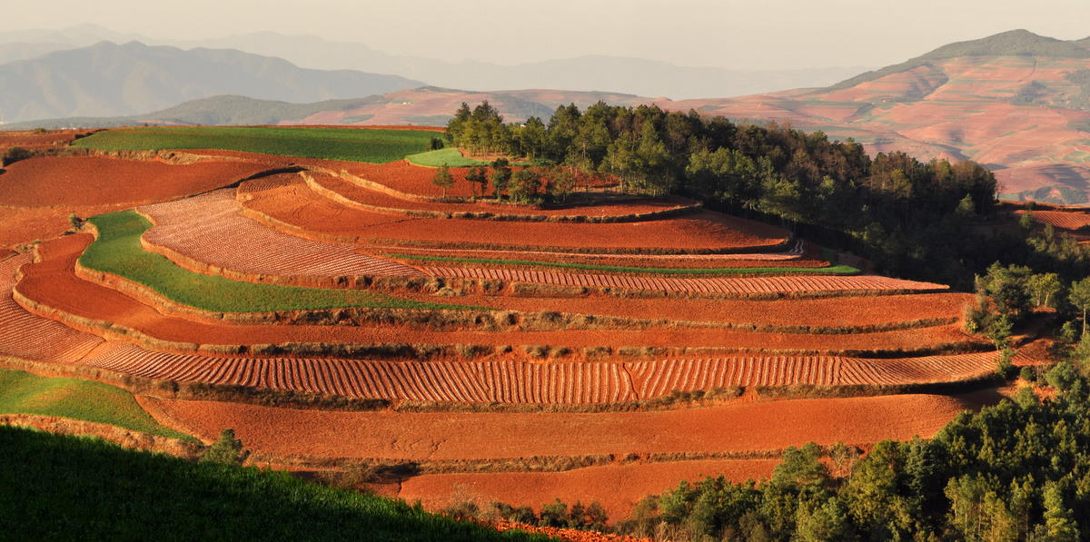 Dongchuan red soil tom and marcia 39 s rough and ready tours for Soil in india